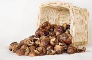 Sposoby wykorzystania orzechów piorących