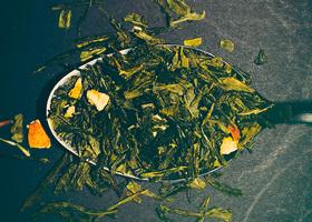 Zdrowotne zalety picia zielonej herbaty