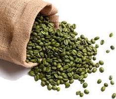 Niezwykłe właściwości zielonej kawy - musisz je poznać!