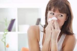 Co powoduje alergie?