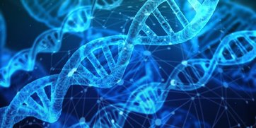 Dietetyczne nukleotydy – suplementacja RNA