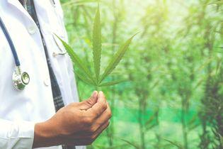 Które rodzaje marihuany wykorzystuje się w medycynie i dlaczego?