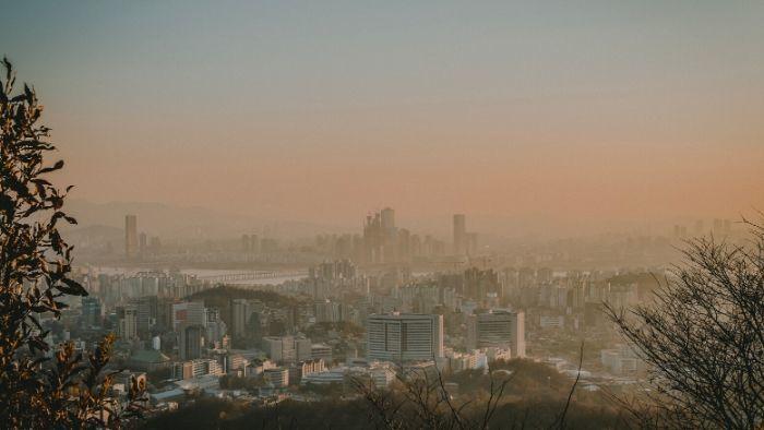 Smog - zagrożenie dla środowiska i zdrowia