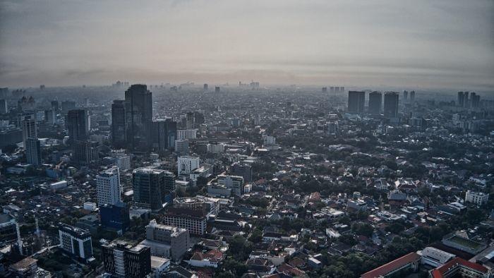 Smog to zagrożenie, z którym można aktywnie walczyć