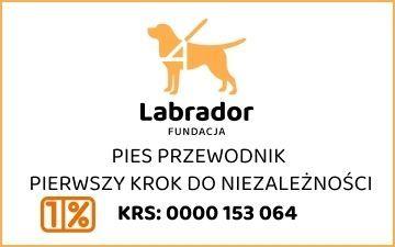 Fundacja Labrador