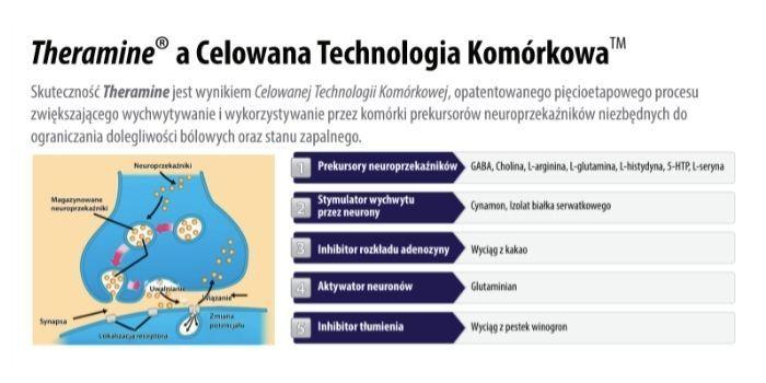 Theramine a Celowana Technologia Komórkowa