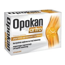 Opokan Artro