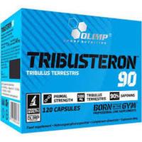 Olimp Tribusteron