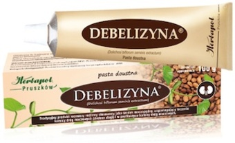 Debelizyna