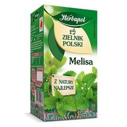 Liść Melisy