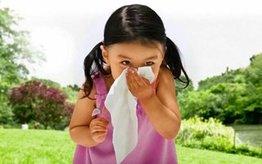 Najlepsze produkty na alergię