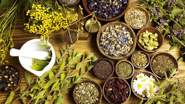 Leki roślinne — ranking najlepszych produktów