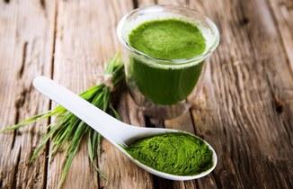 Zielony jęczmień – ranking najlepszych produktów