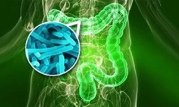 Synbiotyki – ranking najlepszych produktów